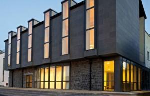 The Newman Institute