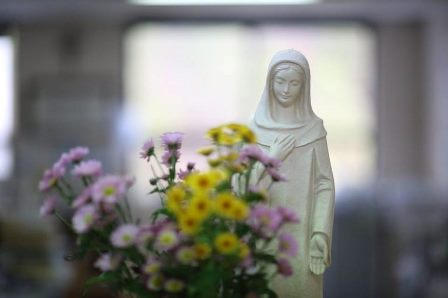 Praying the Rosary at home in May – Pope Francis